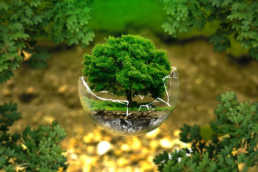 environmental-protection-326923__340