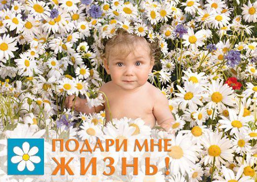 news_7017_image_520x_