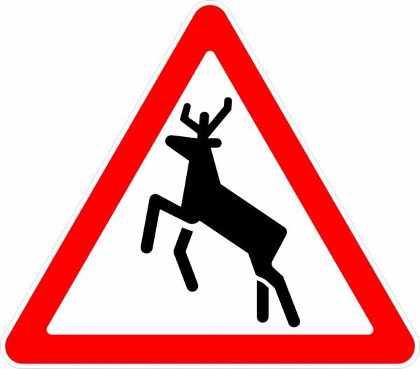Дорожный знак Дикие животные